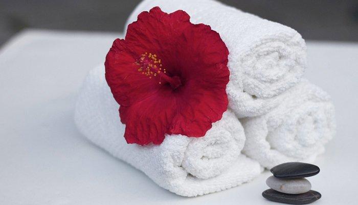 La delicatezza di un fiore associata alla pulizia degli asciugamani in un hotel Riccione