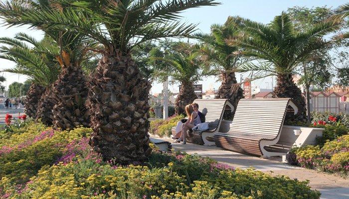 Il lungomare Riccione e le sue panchine in mezzo al verde delle palme